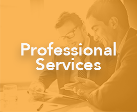Who We Empower - Professional Services HP