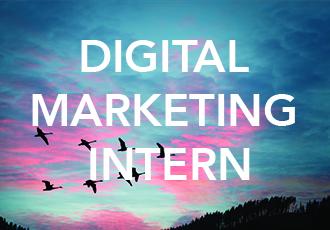 digital marketing intern flowforma